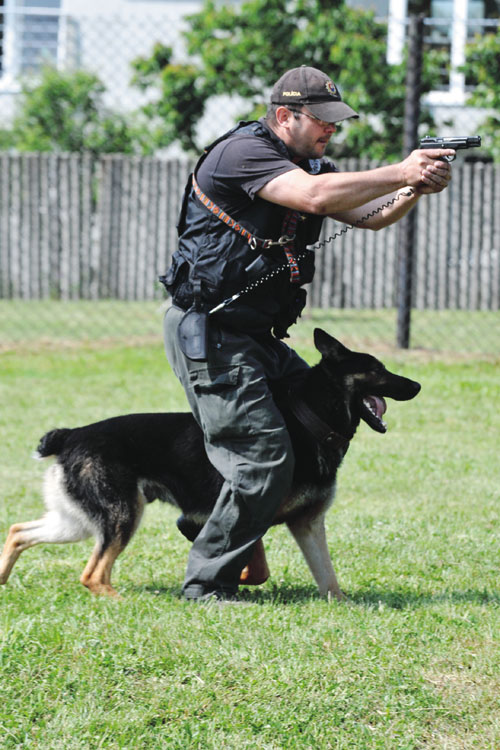 Psovodi – obranári ZVJS MS SR, MsP Brno a KR PZ v Bratislave predviedli aj ukážky postupu pri zásahu so zbraňou, pri ktorej služobný pes chráni psovoda tak, že postupuje s ním v kryte psovodových nôh