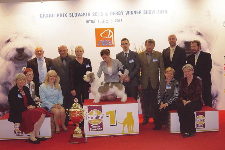SUPER BEST IN SHOW (rozhodca: Cathy Delmar, IRL): Malý Hrubosrstý Vendénsky Baset - Around No Problems, ch: Lofgren Annicka, maj: Raic Iva